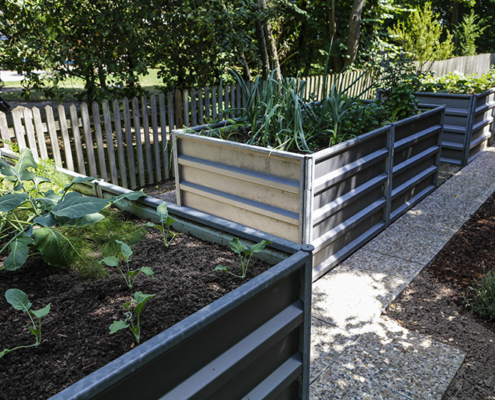 Tipps für ihren Hobby Garten | smartbeet®
